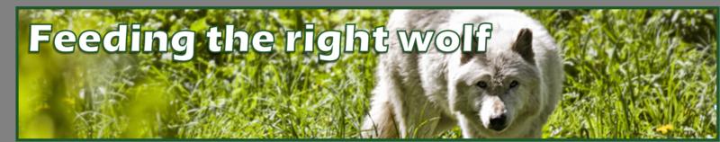 Feeding the right wolf by BN Heard (c)
