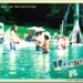 A_Vernon_Postcard_M