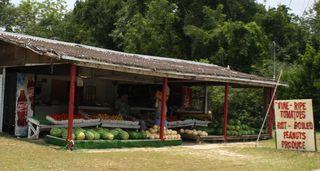 Vernon Florida Produce Stand