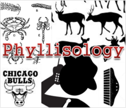 Phyllisology is the study of my godmother, Phyllis