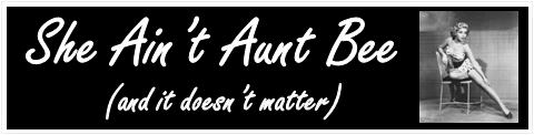 She Aint Aunt Bee by BN Heard (c)