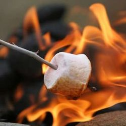 Roasting marshmallows for s'mores