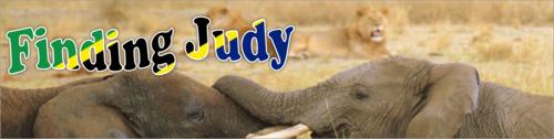 Finding Judy by BN Heard (c)
