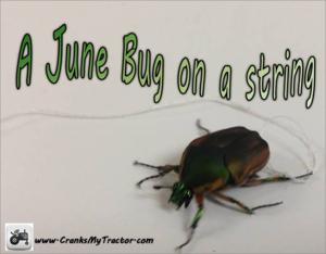 June Bugs Crank My Tractor