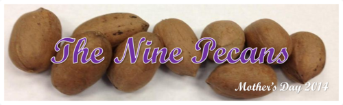 The Nine Pecans by BN Heard (c)
