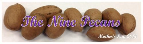 The Nine Pecans by BN Heard (c)