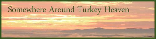 Somewhere Around Turkey Heaven by BN Heard (c)