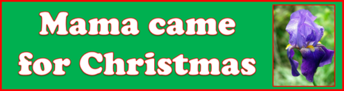 Mama came for Christmas by BN Heard (c)
