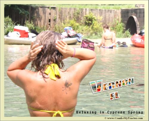 A_Vernon_Postcard_D