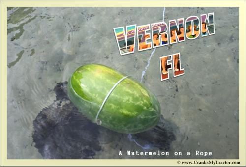 A_Vernon_Postcard_F